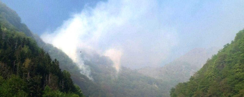 Incendiu puternic in zona Cetatii Poienari