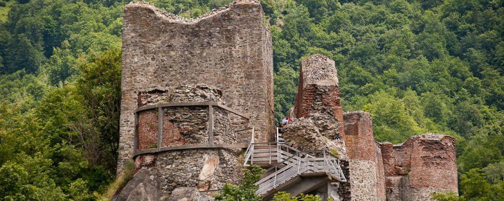 Cetatea Poienari inchisa din cauza ursilor