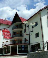 Hotel Piscul Negru